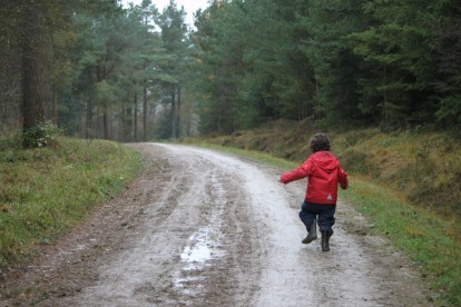 Pudding in red waterproofs running away along a forest path.