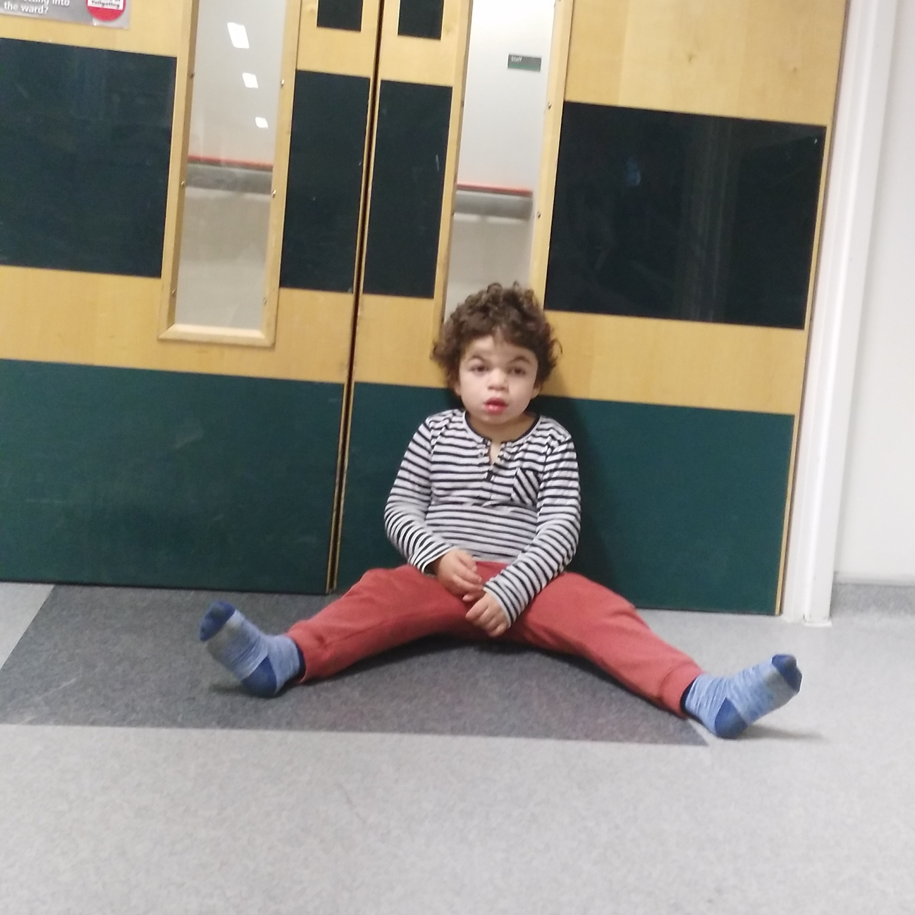 Pudding sitting on the floor by hospital ward doors.